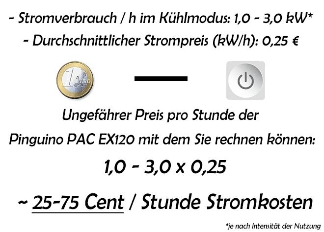 Stromverbrauch-und-Stromkosten-pro-Stunde-De'Longhi---Pinguino-PAC-EX120-Silent